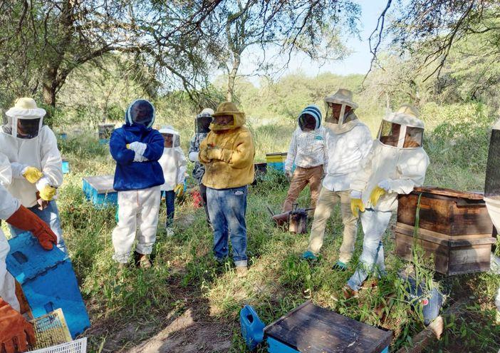 Desde la Unión de Apicultores del Paraguay trabajan en la capacitación y promoción de la producción de miel de abeja y subproductos. Nuestro país tiene un gran potencial.