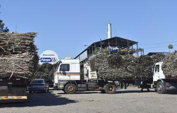 Los cañicultores ayer quedaron aguardando, pues los funcionarios fueron hasta Asunción.