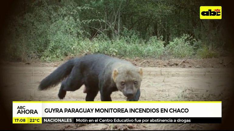 Guyrá Paraguay monitorea incendios en el Chaco