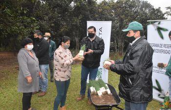 Entregan plantines de cebolla para incentivar las huertas familiares.