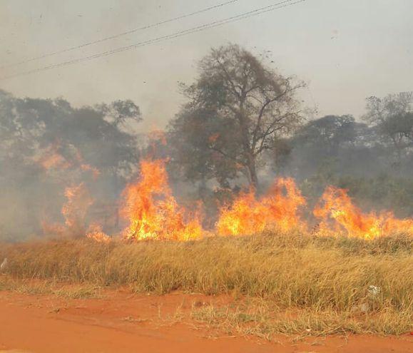 Incendio de pastizales y árboles en San Pedro, al límite con Amambay.
