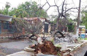 temporal causa destrozos en San Antonio