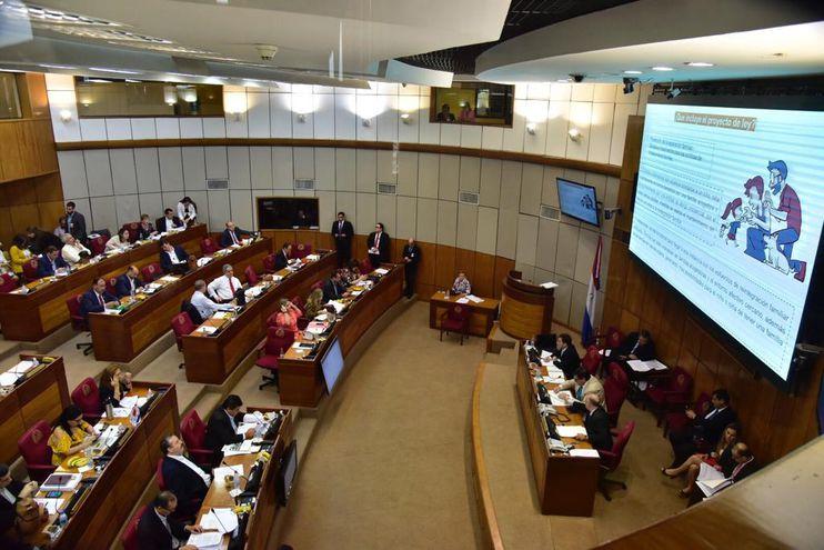 El Senado aprobó la nueva ley de adopciones.