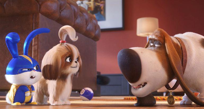 Nuevas mascotas se suman al elenco de esta secuela del taquillero filme de 2016.