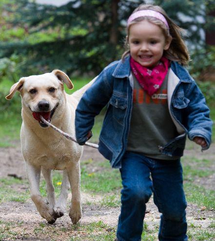 Llega una edad en la que casi todos los niños del mundo insisten con que quieren tener una mascota. Ylo hacen hasta el cansancio.