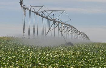 El sector agrícola es y seguirá siendo uno de los pilares de la producción; los referentes del sector público y privado deben aunar esfuerzos para lograr mantener un crecimiento.
