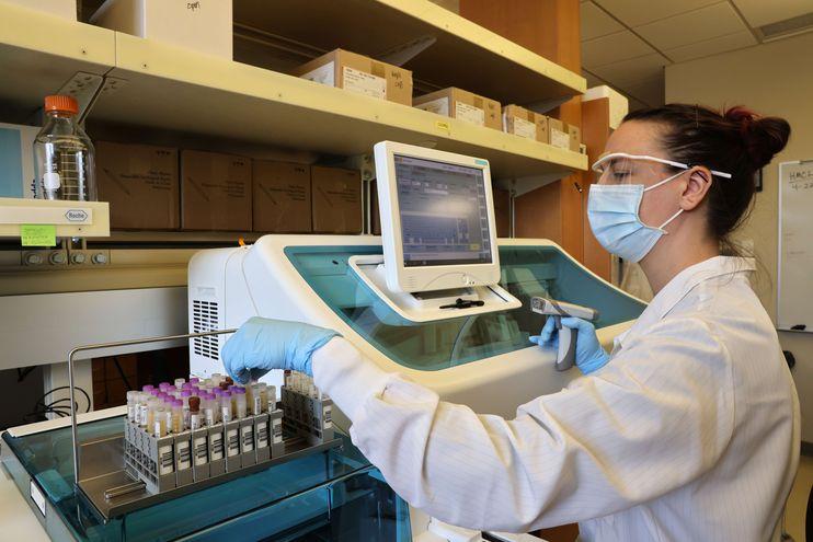Los laboratorios han consignado diversas variantes del coronavirus.