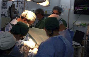 Instan a la donación de órganos y en especial para los niños.
