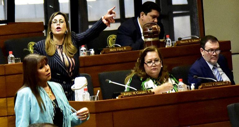 La bancada del PEN denunció que se ocultan datos del Parlasur y pidió explicaciones al titular del Senado, Blas Llano (PLRA).
