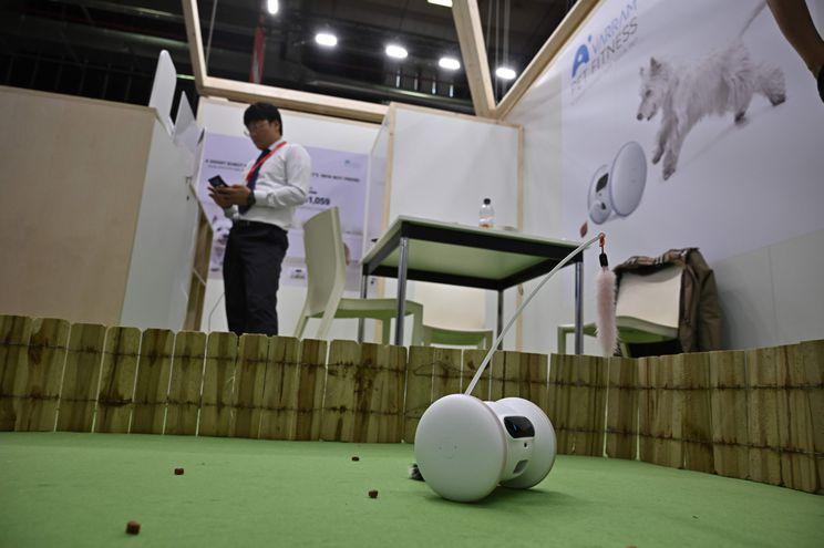 Robot para mascotas.