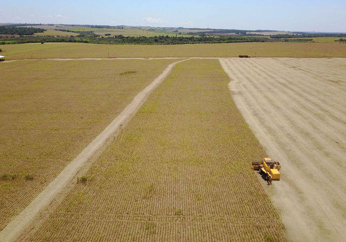 La soja es el renglón agrícola más importante del país.