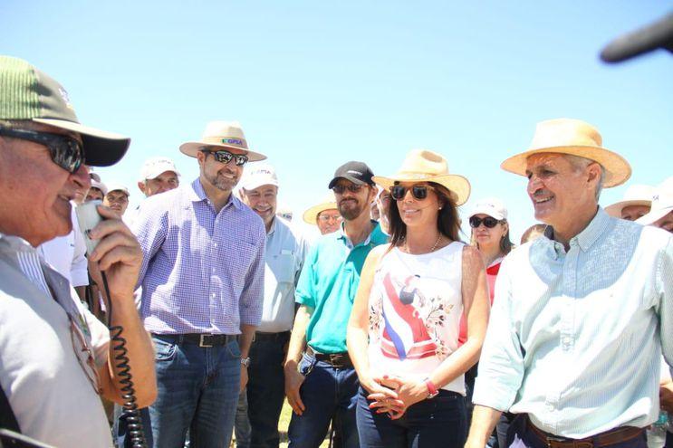 Presidente Mario Abdo Benítez durante el lanzamiento de la Cosecha de Arroz 2020, en el departamento de Itapúa.