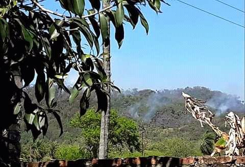 El fuego comenzó  en la zona boscosa de Pirayú.