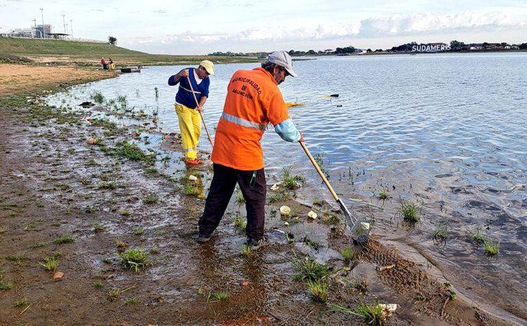 Unos diez funcionarios son los encargados de la limpieza de la ribera del río Paraguay en la zona de la Costanera.