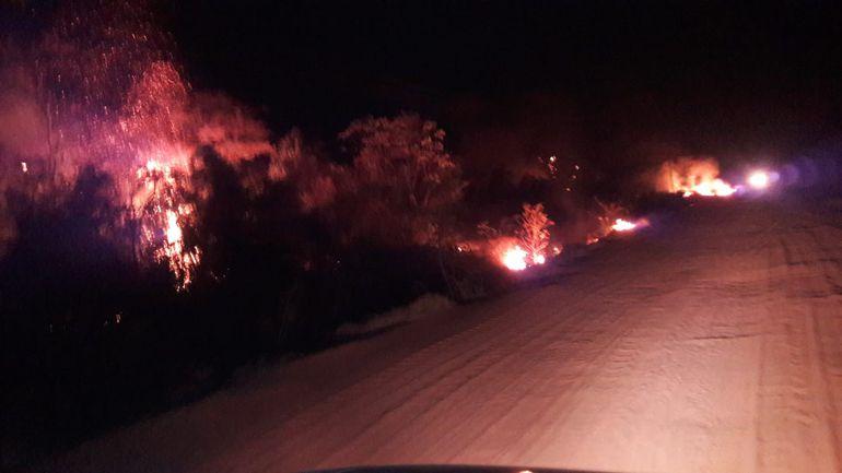 Incendios de pastizales y árboles en San Pedro.