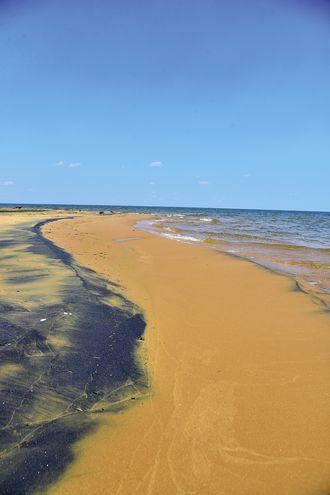 Residuos minerales colorean la arena.