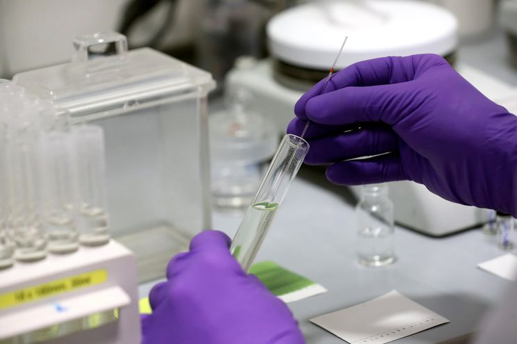 Técnicos de laboratorio trabajan en la empresa PharmaMar, cuyo presidente, José María Fernández, realizó declaraciones a la Agencia Efe sobre el medicamento Aplidin, que según las pruebas realizadas en sus laboratorios podrían resultar efectivos en el tratamiento contra el Coronavirus COVID-19.-