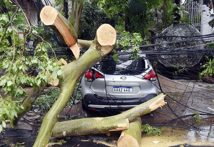 Un automóvil quedó atrapado entre árboles y cables caídos, además de ser afectado por el impacto, en España y General Santos.