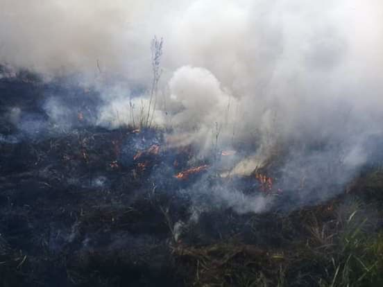 Incendio de pastizal en Ybycuí.