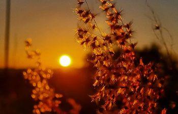 La Dirección de Meteorología pronostica una jornada soleada con temperaturas agradables.