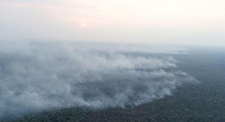 Grandes extensiones de reservas naturales del Pantanal paraguayo están siendo devastadas por el incendio incontenible.