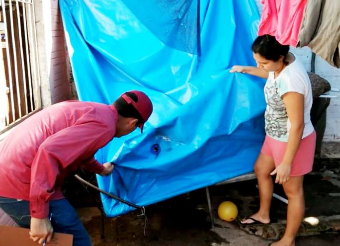 Las piletas de lona  sirven de criaderos. Si están cargadas se debe colocar cloro o cubrir; si se desagotan se debe chequear pliegues.
