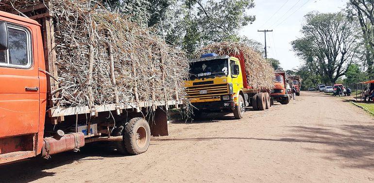 Productores de la caña dulce de Central exigen una lucha frontal al contrabando de azúcar.