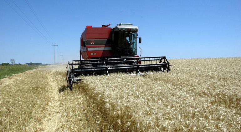 Tras la cosecha de trigo se espera un tiempo durante el cual se realiza el control de malezas, para luego de las lluvias primaverales empezar con los preparativos para la siembra de soja.