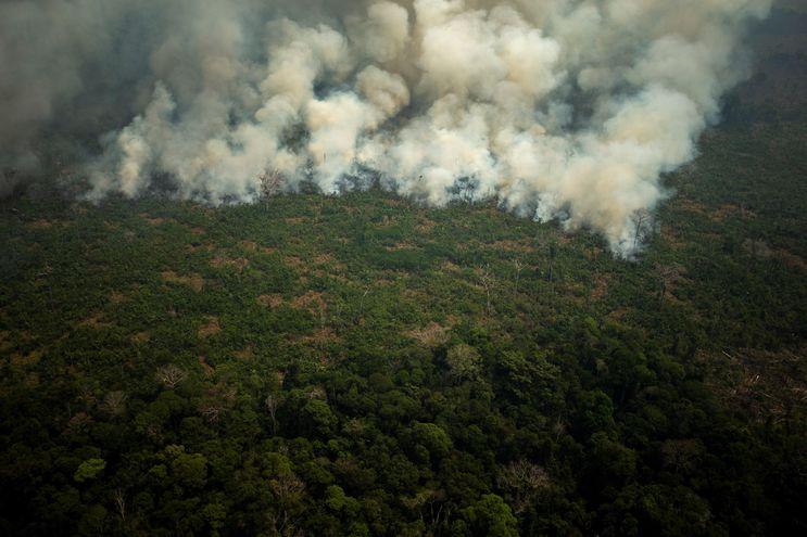 Vista aérea de varias columnas de humo, este viernes, en la selva amazónica de Porto Velho, Rondonia (Brasil).
