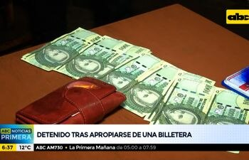 Adolescente detenido tras apropiarse de una billetera