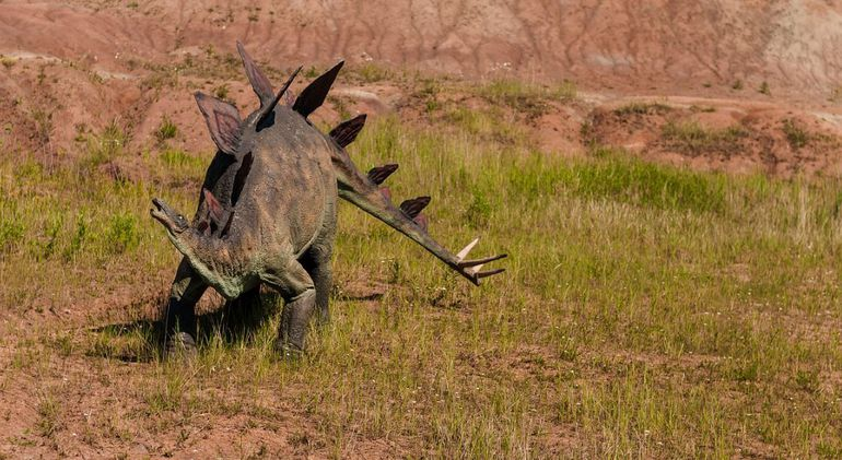 Estegosaurio.