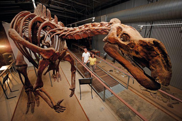 """Los amigos de los fósiles pueden hacer un intento de excavación en el""""Flinders Discovery Centre"""" de Hughenden."""