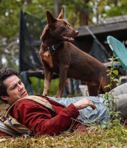 """Dylan O'Brien protagoniza """"Amor y monstruos""""."""