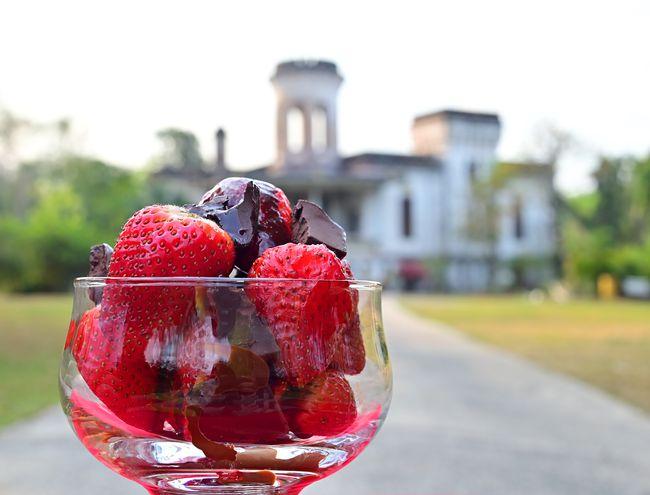 Frutillas con chocolate frente al castillo de Carlota Palmerola, Areguá.