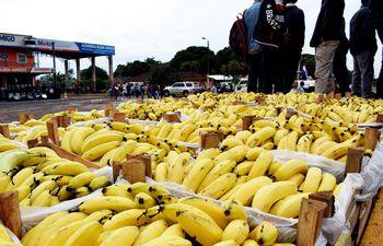 productores-bananeros-de-cuatro-departamentos-del-pais-se-manifestaron-la-semana-pasada-para-exigir-la-reglamentacion-de-la-ley-de-inclusion-de-la-ci-200231000000-1836618.jpg