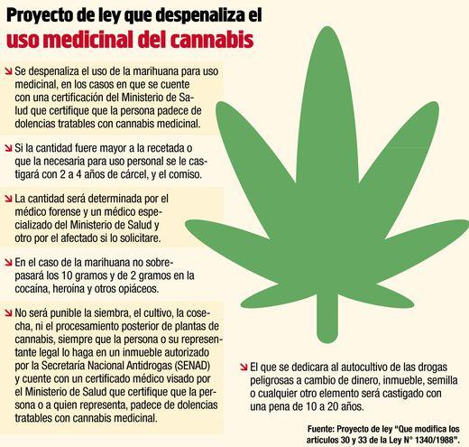 PROYECTO DE LEY QUE DESPENALIZA EL USO MEDICINAL DEL CANNABIS