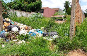 Uno de los baldíos convertidos en minivertederos a causa de la inconsciencia y la pasividad de la comuna luqueña.