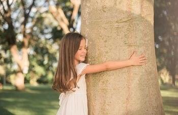 El ser querido se perpetúa en un árbol que se puede elegir.