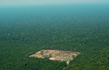 Un área ilegalmente deforestada en la Amazonía.