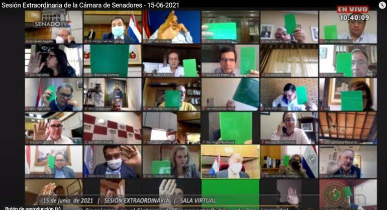 Tarjeta verde. Así votaron los senadores en la sesión extraordinaria virtual.