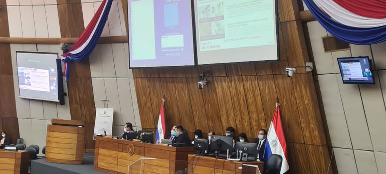 El titular de la ANDE, Félix Sosa, presentó ayer ante el Congreso, el proyecto de presupuesto 2022 para la institución a su cargo.