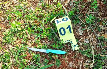 El arma blanca que fue arrojada por Dalvir Lauermann luego de cometer el hecho.