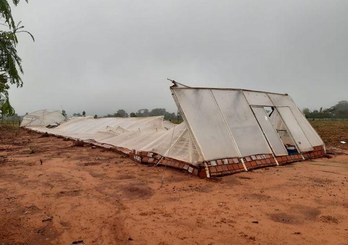 Un invernadero de   Calle 8.000  Chachí del distrito de Guayaybí se desplomó por la fuerza de la tormenta.