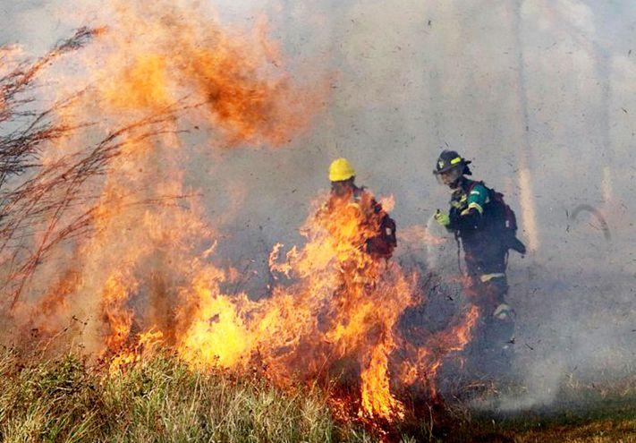 Bomberos combatiendo un incendio en los alrededores de Robore, provincia de Santa Cruz. Los brotes de incendios, que arrasaron 471.000 hectáreas de bosques y cultivos en cinco días, fueron causados por la quema de campos de cultivo.