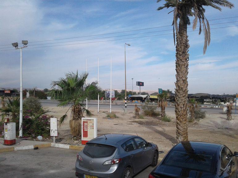 Oasis en el desierto de Judea y los camellos listos para dar un paseo.