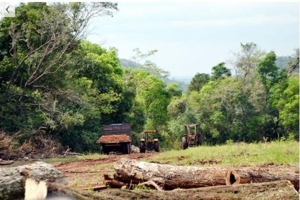 La Cordillera del Ybytyruzú también fue afectada por los incendios forestales.