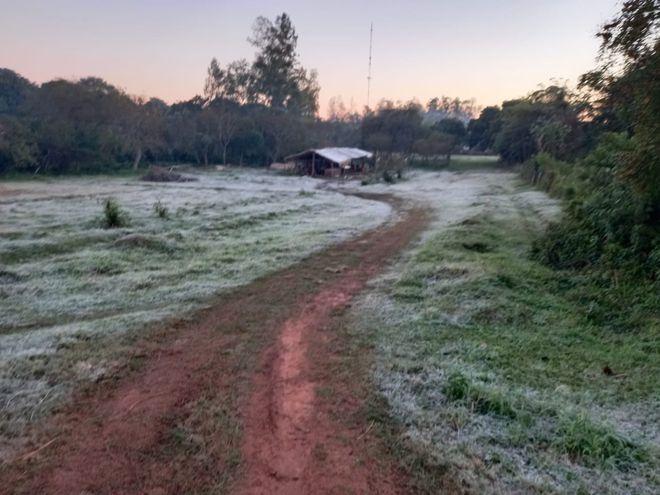 Una blanca postal describe la escarcha que se tuvo esta madrugada en Paraguarí.