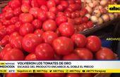 """Volvieron los """"tomates de oro"""""""