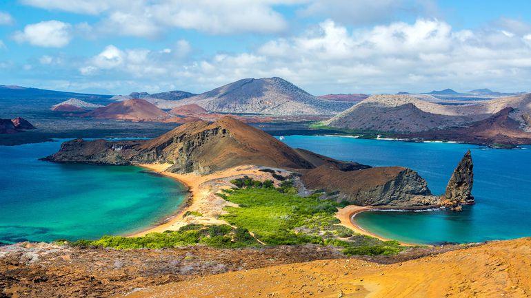 Parque Nacional Galápagos cumple sesenta años - Ciencia - ABC Color